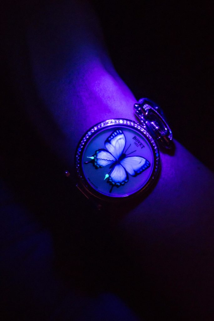 Bovet's butterfly watch for ladies that glows in the dark